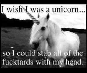 unicorn, quotes, and stab image