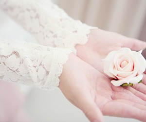 flowers, rose, and hands image