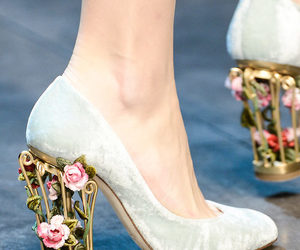 dolce and gabbana, fashion, and roses image