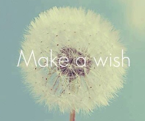 wish, flowers, and make a wish image