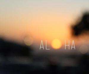 Aloha, sun, and summer image