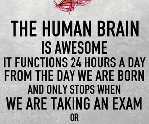 awesome, brain, and falling in love image