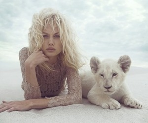 lion, photography, and blonde image