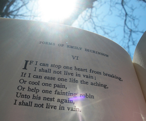 emily dickinson and don't live in vain image