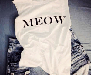fashion, meow, and cat image