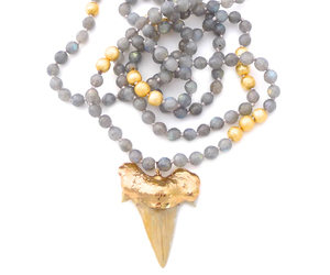necklace, sharktooth, and gold image