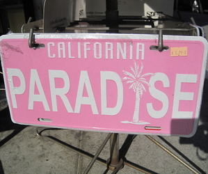 paradise, california, and pink image