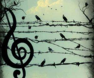 bird, music, and sky image