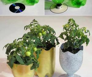 bottle, diy, and recycling image