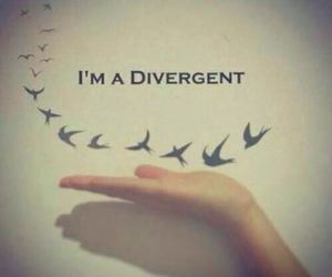 divergent, bird, and book image