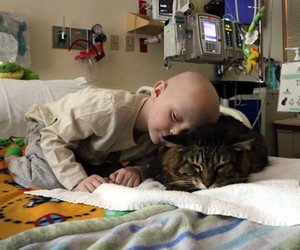 best friend, boy, and cancer image