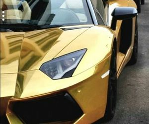 gold, lambo, and Lamborghini image