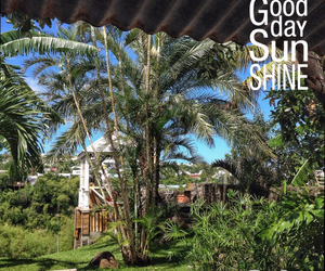 good day, paradise, and reunion island image