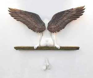 angel and wings image