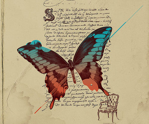 butterfly and story image