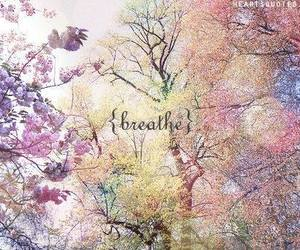 breathe, tree, and flowers image