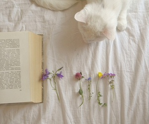 cat, book, and flowers image