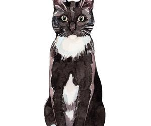 cat, art, and wallpaper image