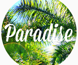 paradise, summer, and sun image