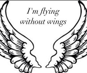 Flying, song lyrics, and wings image