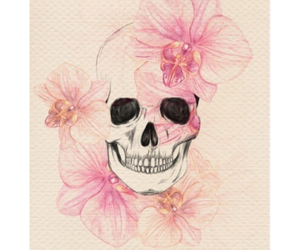 flowers, pink, and skull image