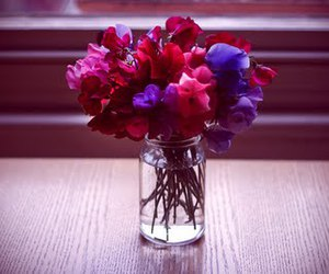 beauty, cool, and flowers image