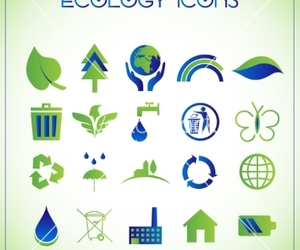 butterfly, eco, and ecology image