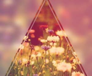 flowers, triangle, and wallpaper image