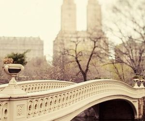 photography, places, and Central Park image