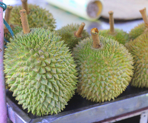 durian, exotic, and food image
