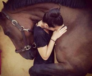 animals, horse, and hugs image