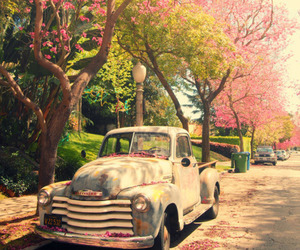 car, flowers, and lovely image