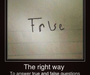 true, false, and funny image