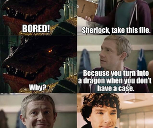 sherlock, funny, and smaug image