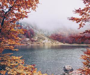 autumn, nature, and lake image