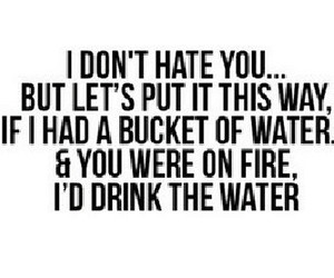 hate, water, and lol image