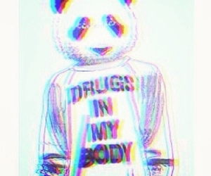 drugs, panda, and trippy image