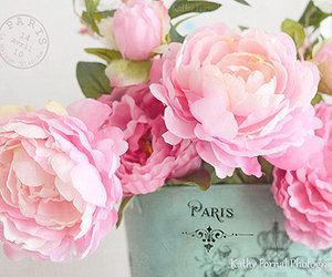 flowers, rose, and shabby chic image