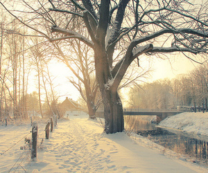 amazing, photography, and snow image