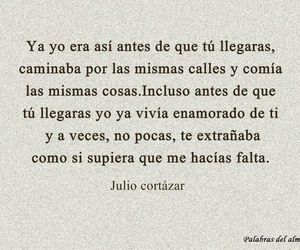 amor, frases, and julio cortazar image