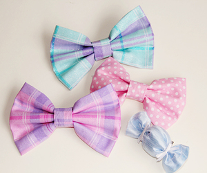 bows and cute image