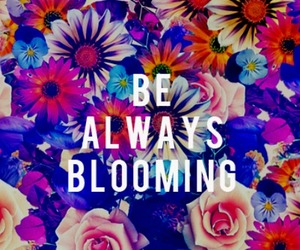 flowers, quotes, and colorful image