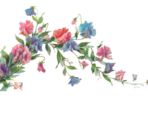 floral, overlay, and png image