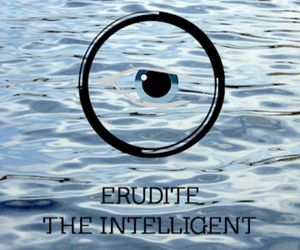 divergent and erudite image