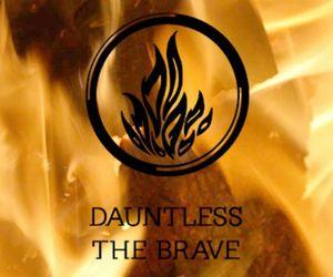 dauntless and divergent image
