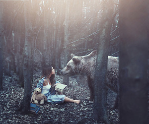 bear, fantasy, and forest image