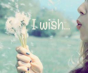 wish, quote, and love image