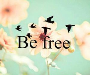be free, birds, and flowers image