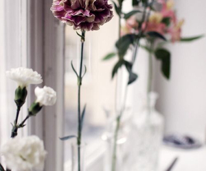 florals, soft, and flowers image