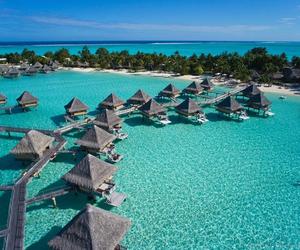 paradise, summer, and amazing image